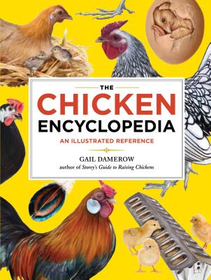 The Chicken Encyclopedia By Damerow, Gail